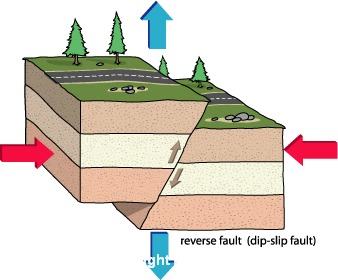 Schematic illustration of a reverse fault. Note that the view is a cross-section through the Earth, such that the up-direction on the page is away from the centre of the Earth.