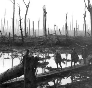 Ypres, 1917, in the vicinity of the . Battle aftermath. Remains of the Chateau Wood