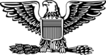 Insignia of a United States Air Force Colonel