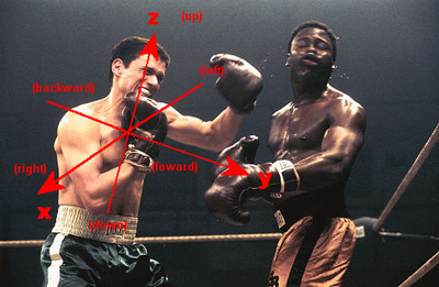 A   coordinate system, presenting the z (up) vector and y (forward) vector, the right is defined to be the positive x vector. In this image, left and right are defined from the attacking boxer's perspective.