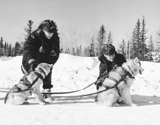 RCMP patrolling with sled dogs, 1957.
